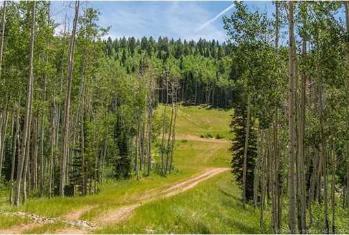 249 White Pine Canyon Road - Photo 18