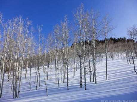 249 White Pine Canyon Road - Photo 2