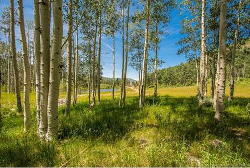 249 White Pine Canyon Road - Photo 12