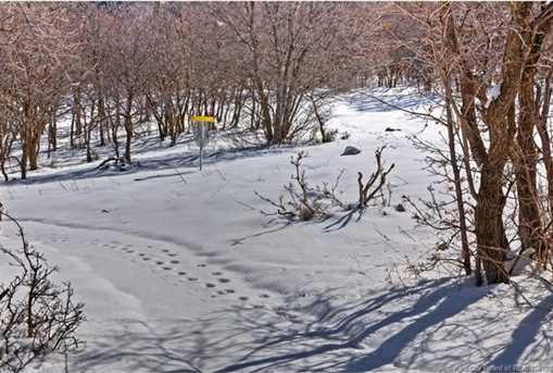 75 E Deer Meadow - Photo 16