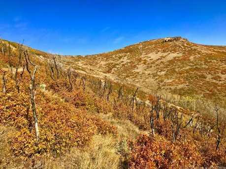 10 Kent Canyon - Photo 24