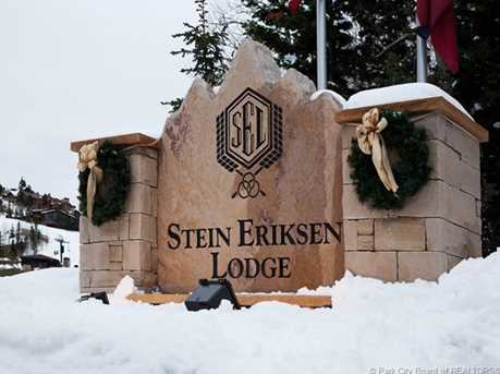 7700 Stein #132 - Photo 2