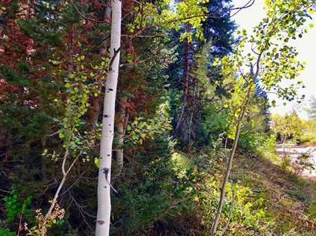 2369 Pine Meadow - Photo 10