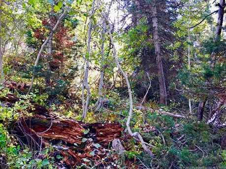 2369 Pine Meadow - Photo 12
