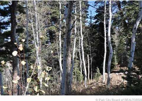 2369 Pine Meadow - Photo 30