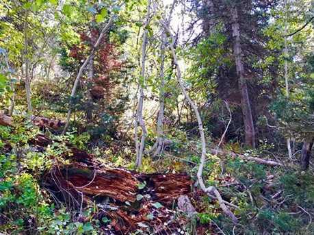 2369 Pine Meadow - Photo 24