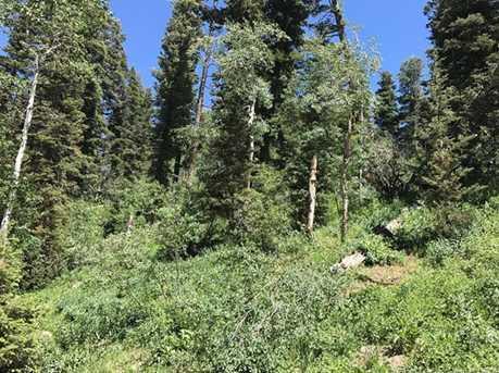 2353 Pine Meadow - Photo 8