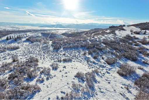 6043 N Maple Ridge Trail - Photo 26