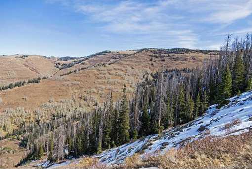 7973 Acres Bear Mountain Ranch - Photo 26