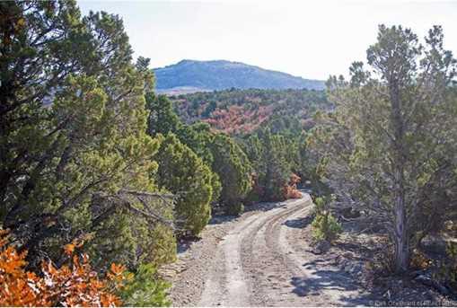 7973 Acres Bear Mountain Ranch - Photo 24