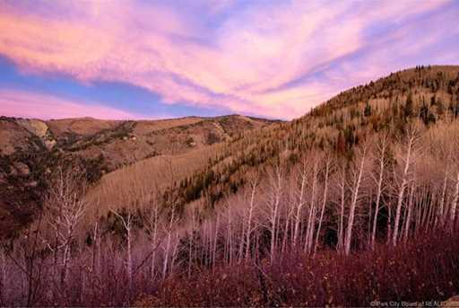 7973 Acres Bear Mountain Ranch - Photo 6