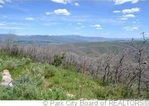 2980 Forest Meadow Road - Photo 2