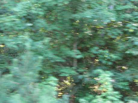 43 Dupont Highway - Photo 14