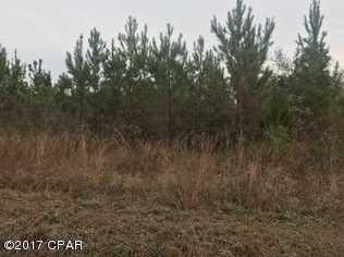 00 Carr Rd - Photo 1