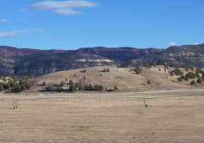 1790 E Paunsaugunt Cliffs Dr - Photo 52