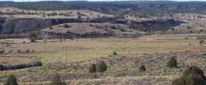 1790 E Paunsaugunt Cliffs Dr - Photo 34