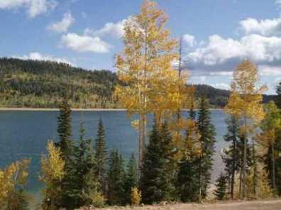 5415 W Deer Trail Nle 5-7 - Photo 6