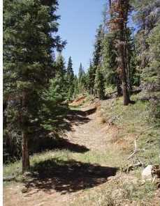 5415 W Deer Trail Nle 5-7 - Photo 2