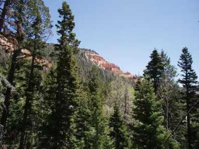 5415 W Deer Trail Nle 5-7 - Photo 4