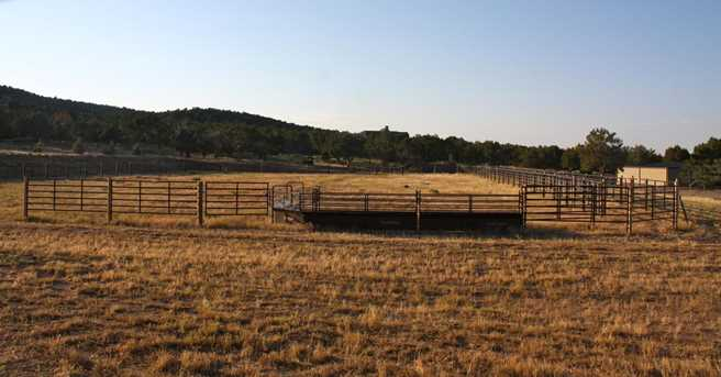 Lot 45 S Vaquero Way - Photo 6