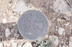 880 Acres Blue Mountain - Photo 10