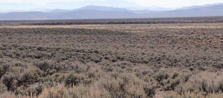 Hwy 56 & Antelope Rd. - Photo 10