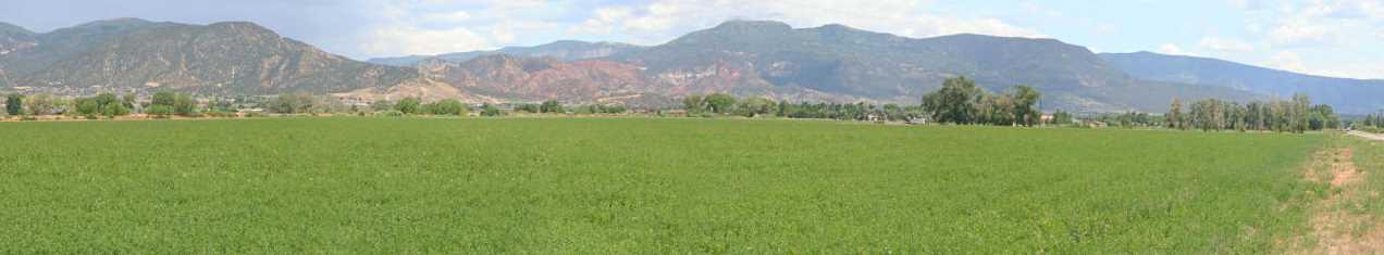 114.81 Acres - Photo 2