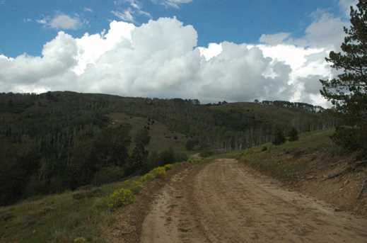 880 Ac Summit Mountain Rd - Photo 2