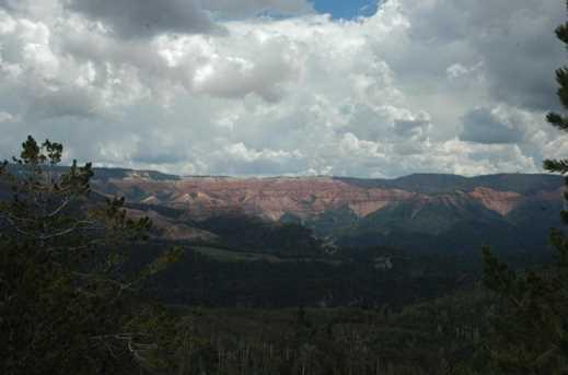 880 Ac Summit Mountain Rd - Photo 14