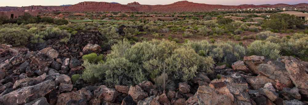 2138 N Chaco Trail #11 - Photo 12