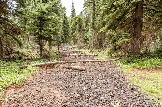 815 W Bear Track - Photo 44