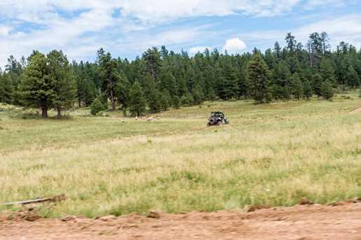 815 W Bear Track - Photo 28
