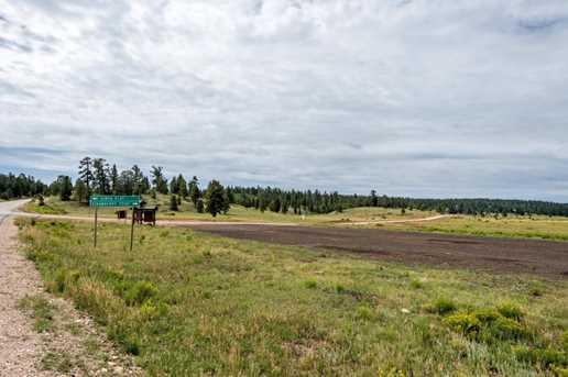 815 W Bear Track - Photo 48