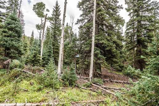 815 W Bear Track - Photo 34