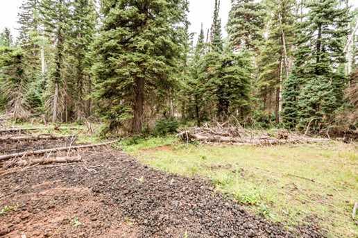 815 W Bear Track - Photo 56