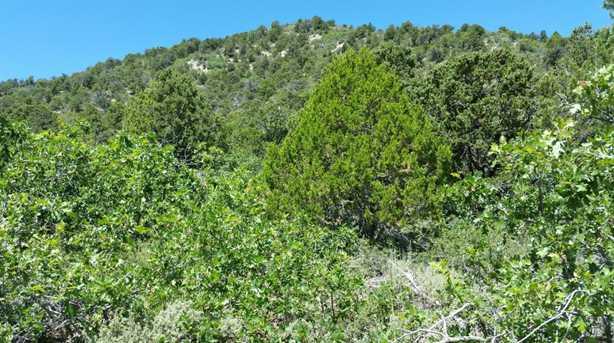 Hidden Canyon Rd #223 - Photo 10
