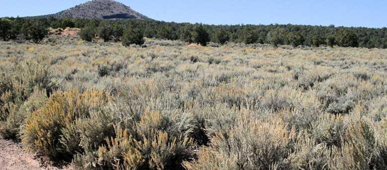 59 86 Acres Little Creek Mesa Rd - Photo 6