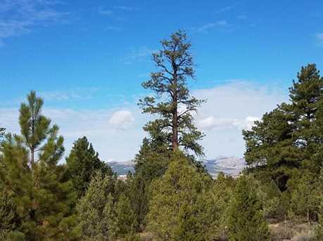 10 Acres Pine Lake Rd - Photo 4