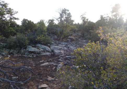 Lots 58 59 60 Pinion Hills - Photo 14