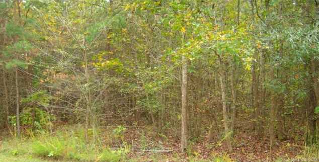 5903 Wood Duck Way #Lot 26 - Photo 1