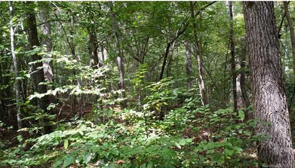 Lot 187 &amp 186 Tennessee Trail #187 - Photo 4