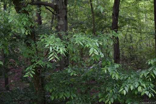 25 Acres South Fork Road - Photo 4