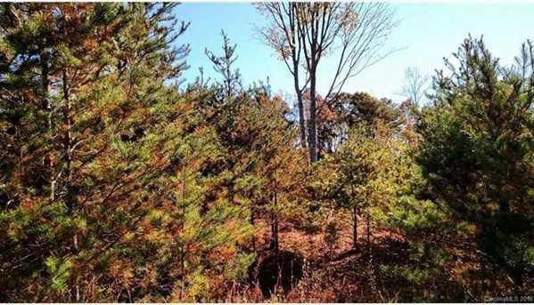 Lots 1, 4, 6 Deer Creek Trail #1,4, & 6 - Photo 8