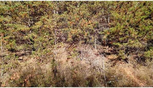 Lots 1, 4, 6 Deer Creek Trail #1,4, & 6 - Photo 18