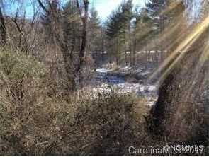 999 Hendersonville Road #.98 acres - Photo 4