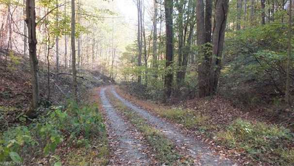 6.38 Acres Wooded Mountain Trail - Photo 10