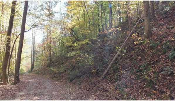 6.38 Acres Wooded Mountain Trail - Photo 6