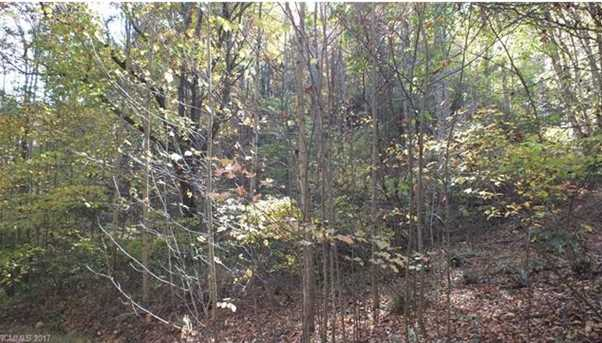 6.38 Acres Wooded Mountain Trail - Photo 8