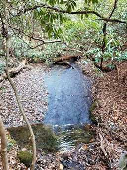 7.67 Acres Off Davis Mountain Road #1 - Photo 4