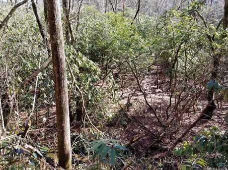 8 Acres Off Davis Mountain Road #2 - Photo 6